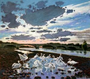 "Swans at Putney - 24""x24"" £250"